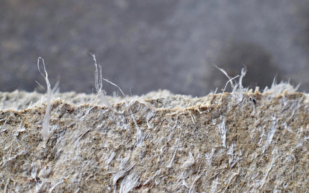 Moderaterna: Asbestförbud inskränker vår frihet